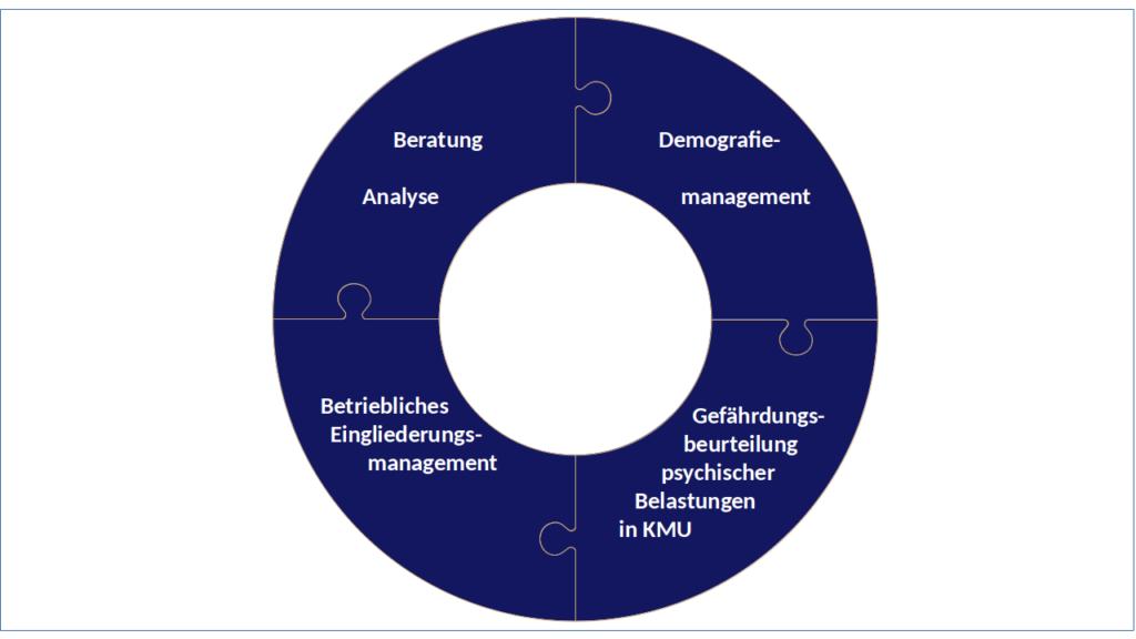 Betriebliches Gesundheitsmanagement - bgm21 Leistungen und Handlungsfelder